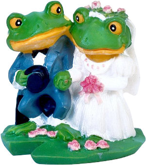 frog bride and groom wedding